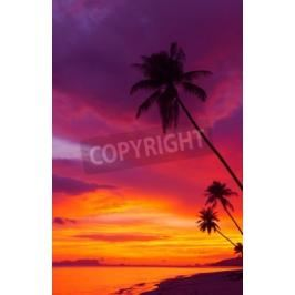 Fototapeta Sunset over the ocean with tropical palm trees silhouette vertical panorama