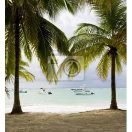 Plakat Sandy Beach, Barbados, Karaiby